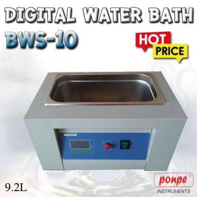 BWS-10